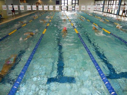 piscinafolgaria