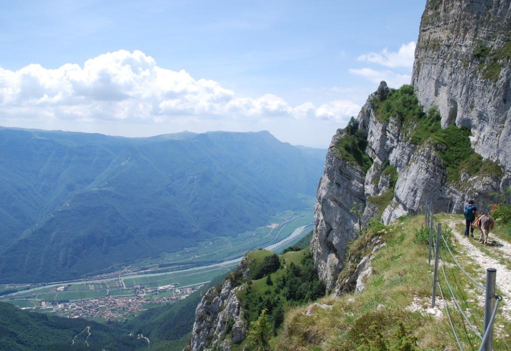 Parco naturale locale del monte baldo il trentino dei for Monti del trentino