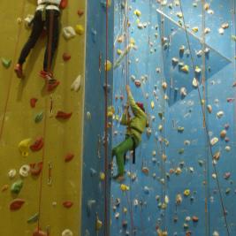 3041517300_e955b79065_b_climbing-children