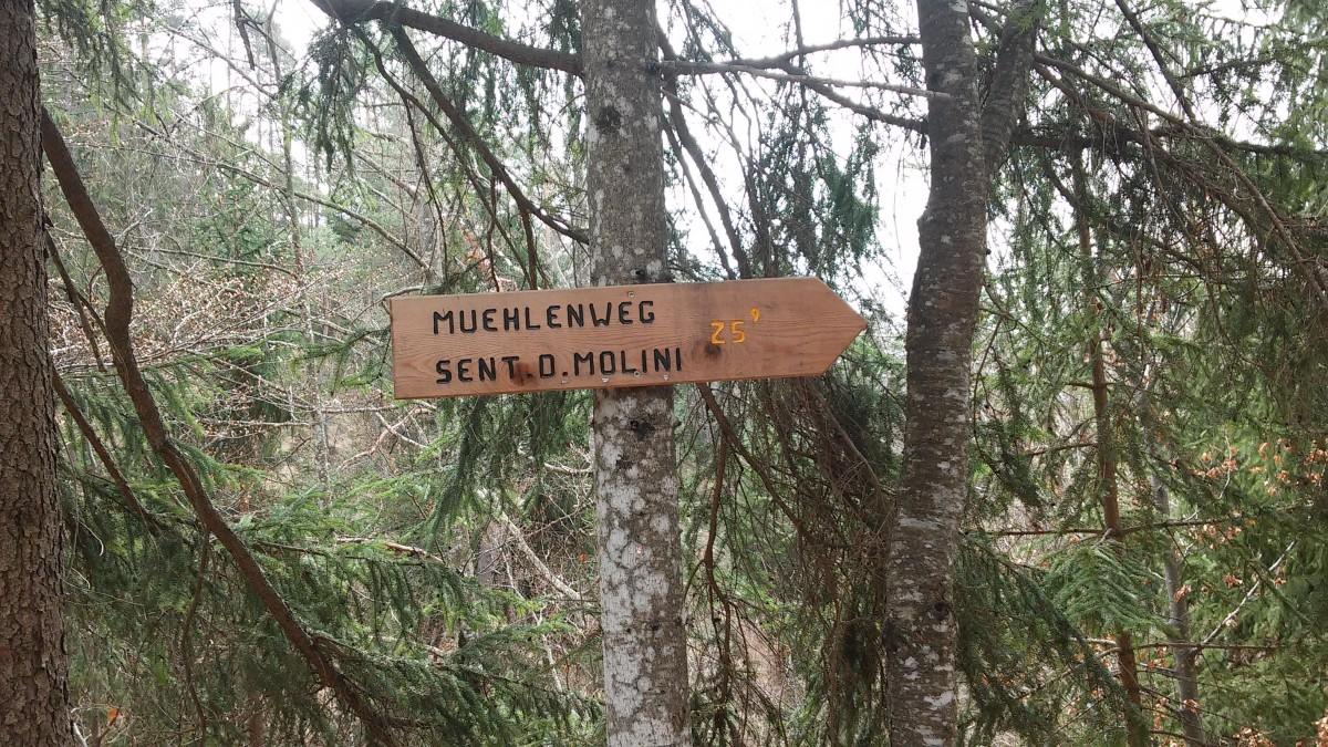 Mulini di Aldino 5 - Trentino dei Bambini