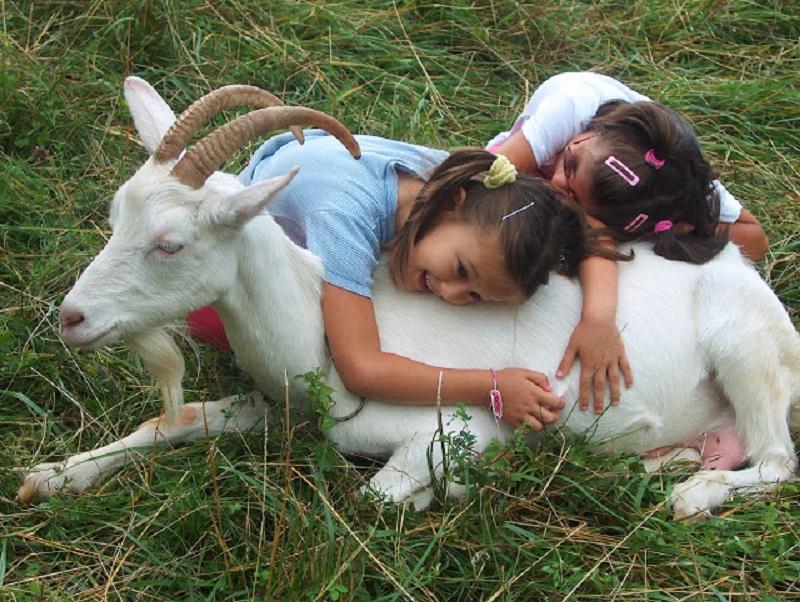 gioia e pace-la fonte-iltrentinodeibambini