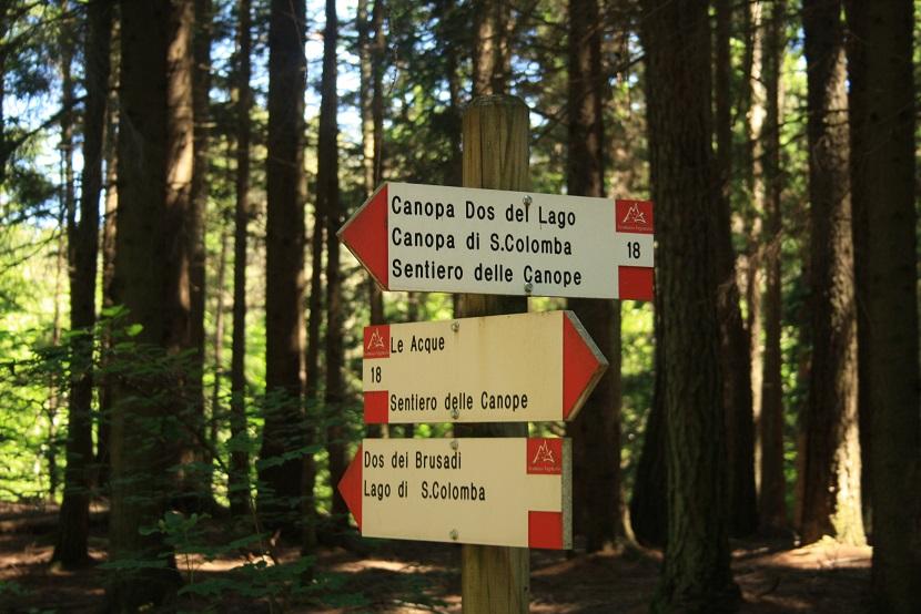 sentiero-canope-iltrentinodeibambini