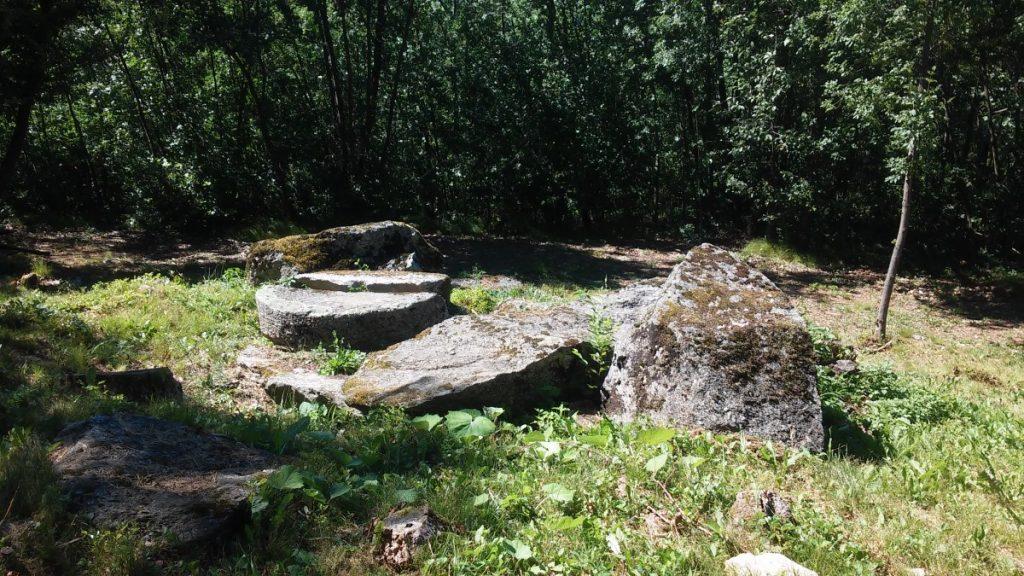passeggiata nel bosco - san Michele (11)