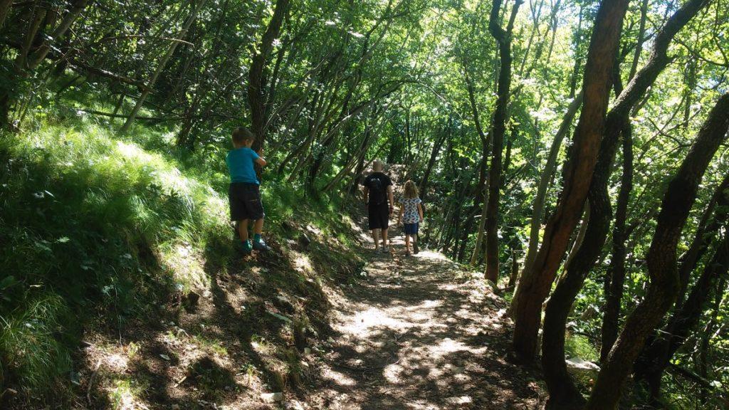 passeggiata nel bosco - san Michele (26)
