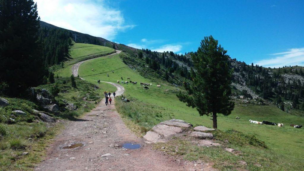 Cermis - laghetti di Bombasel - Trentino dei bambini (49)