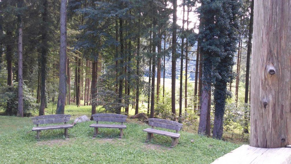 Parco degli assizzi (66)