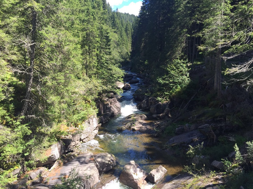 Ponte Tibetano-Predazzo-1