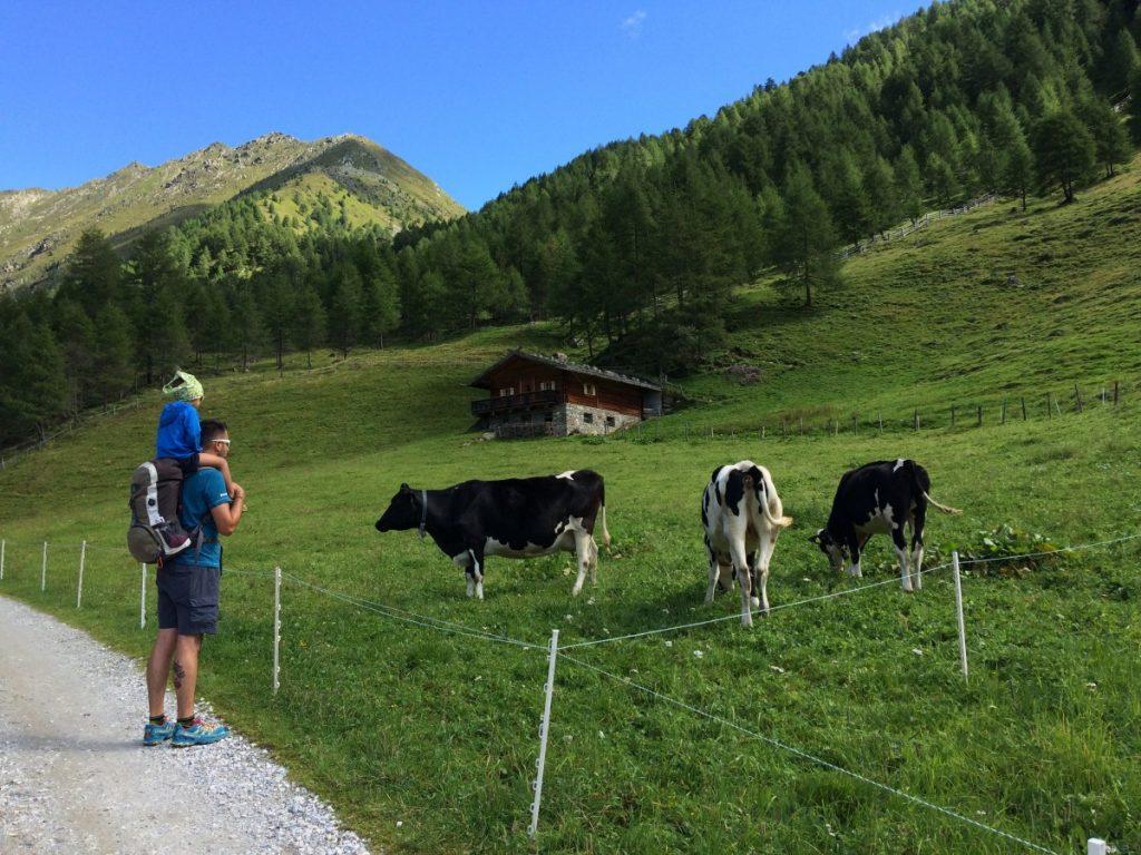 rifugio Pranterstadelhütte (1)