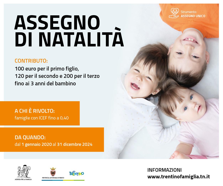 Trentino Industriale   dicembre gennaio 2014 by